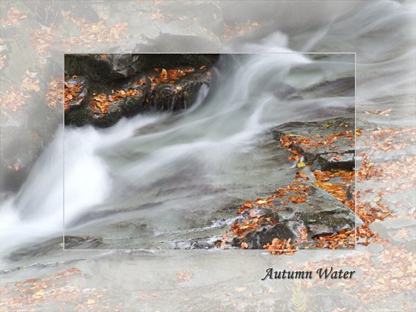 Autumn Water