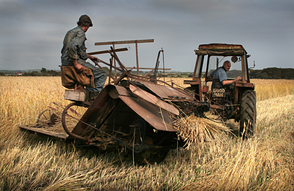In the Harvest, Balladoole