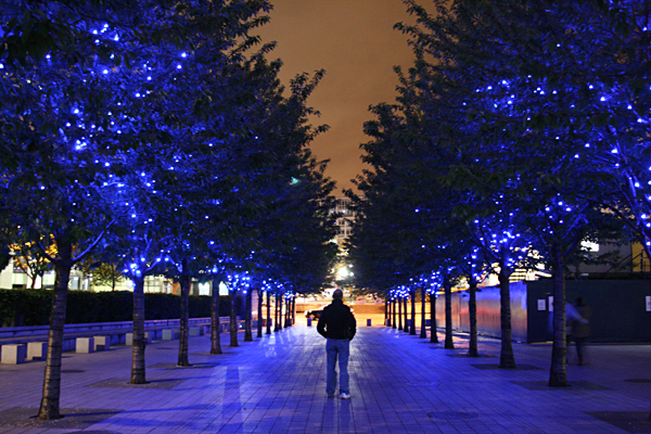 Twinkling Trees, London